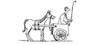 cart before the horse